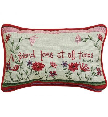 A Friend Loves At All Times Pillow